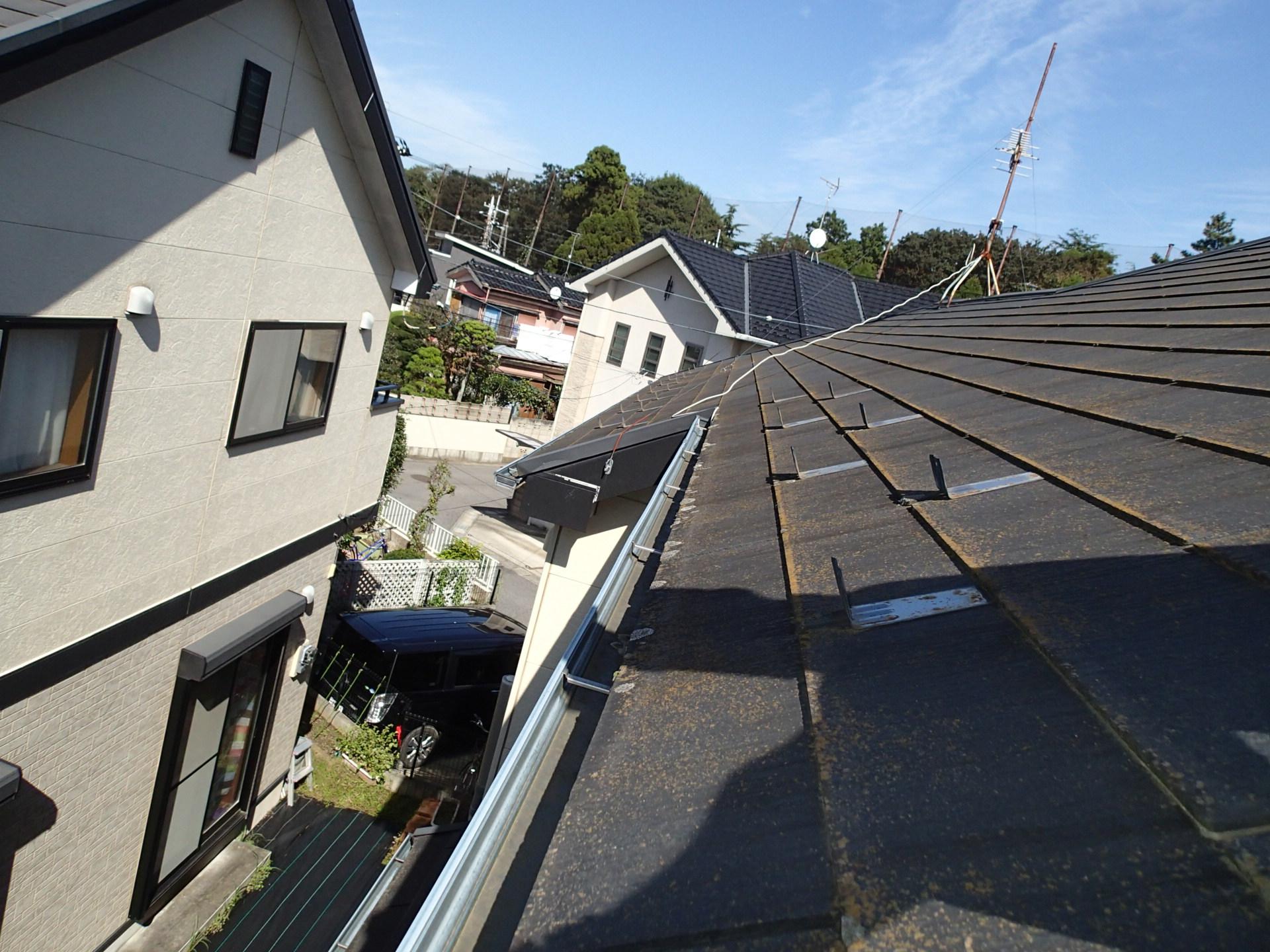 屋根に苔がびっしり生えています。